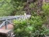 Pont de la liane 1