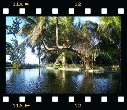 bassin du domaine de marancourt