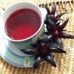 infusion hibiscus karkadé